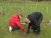 trees-planting-woodland-harry-jack_0