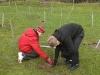 trees-planting-woodland-harry-jack_0