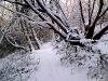 nncoed-nant-byr-snow-dsc005