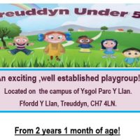 Treuddyn Under 5s - new hours