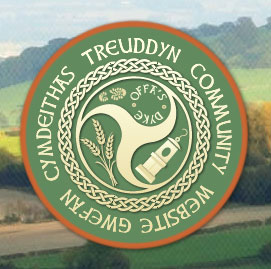 Calling any clubs or organisations in Treuddyn